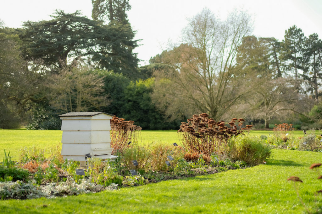 Large wooden Beehive